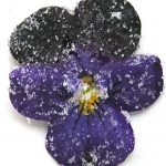 Candied Sugared Violets: A Spectacular Garnish
