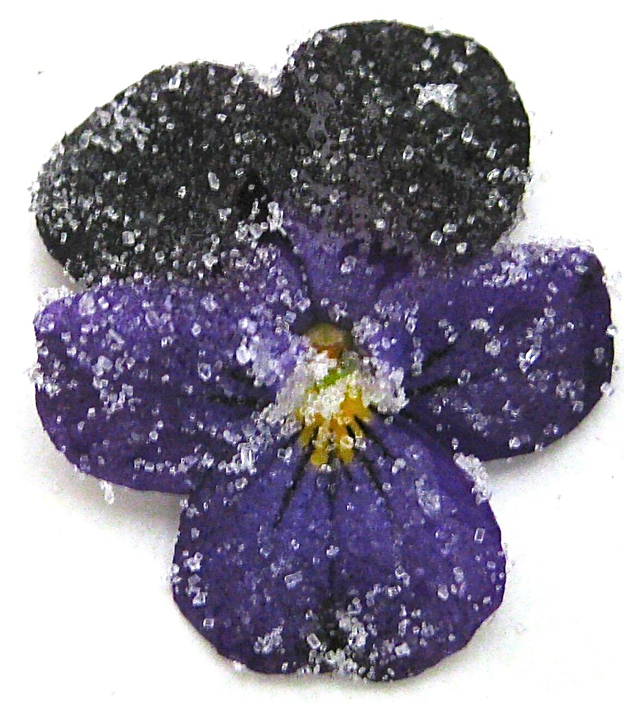 Candied Or Sugared Violets A Spectacular Garnish