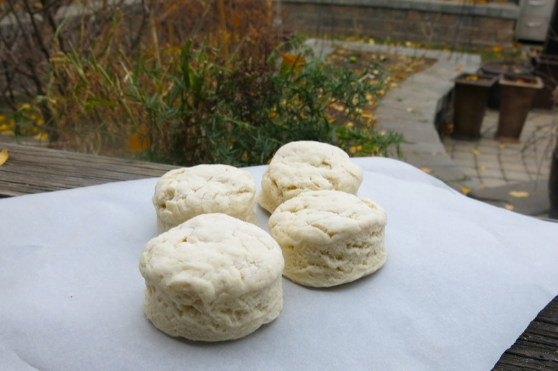 Traditional Old Fashioned Buttermilk Biscuits or Baking Powder Tea Biscuits