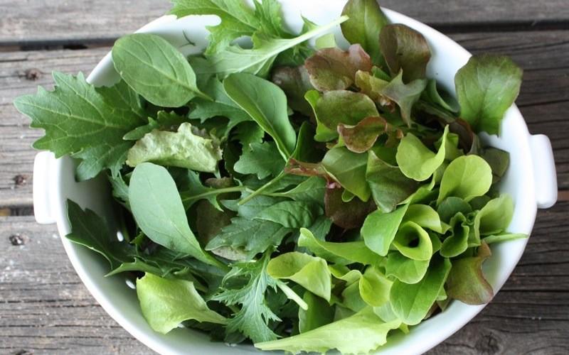 Prairie Spring Salad Dressing