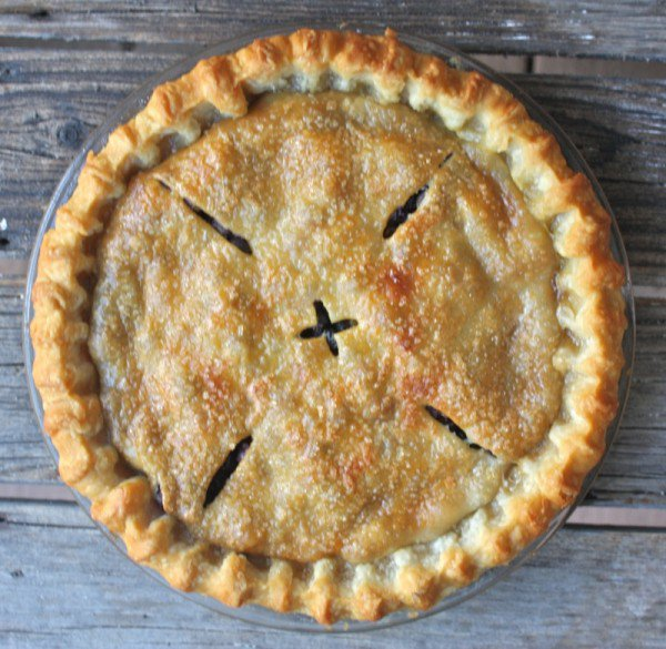 Traditional canadian prairie wild saskatoon berry pie for Authentic canadian cuisine