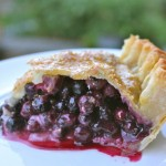 The Canadian Food Experience Project: The Saskatoon Berry
