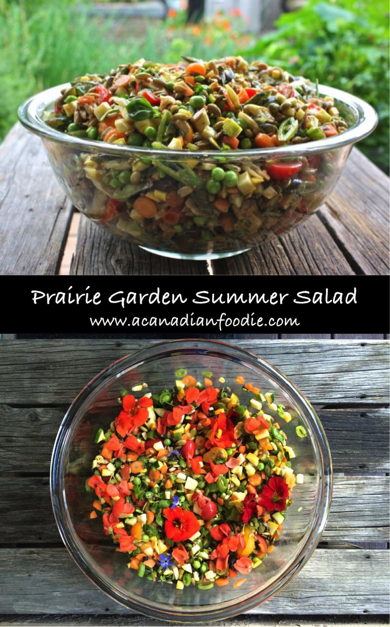 Prairie Garden Summer Salad: Celebration of Mid-Summer Harvest! Each garden vegetable is featured! This symphony of summer pops with blackcurrant dressing.