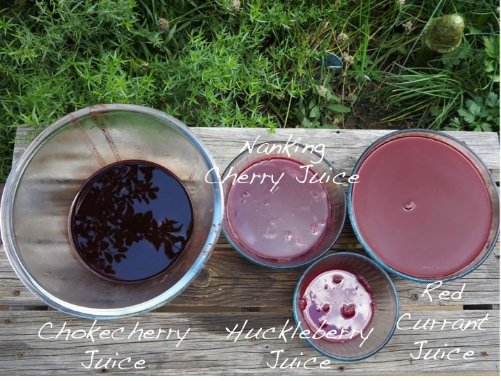 Berry Juices