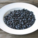 Wild Alberta Blueberries