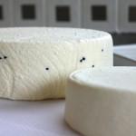 Cheesepalooza Challenge Six: Asiago Pepato