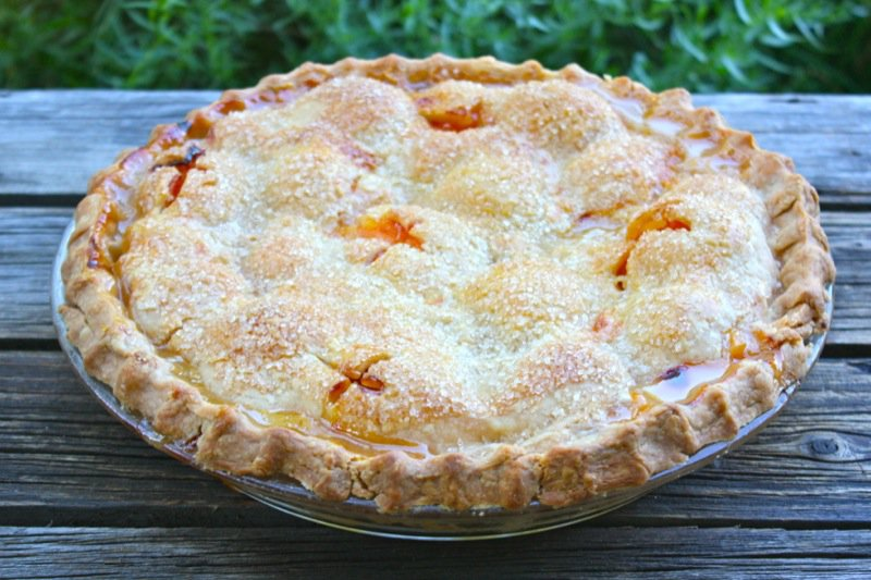 Traditional Apricot Pie