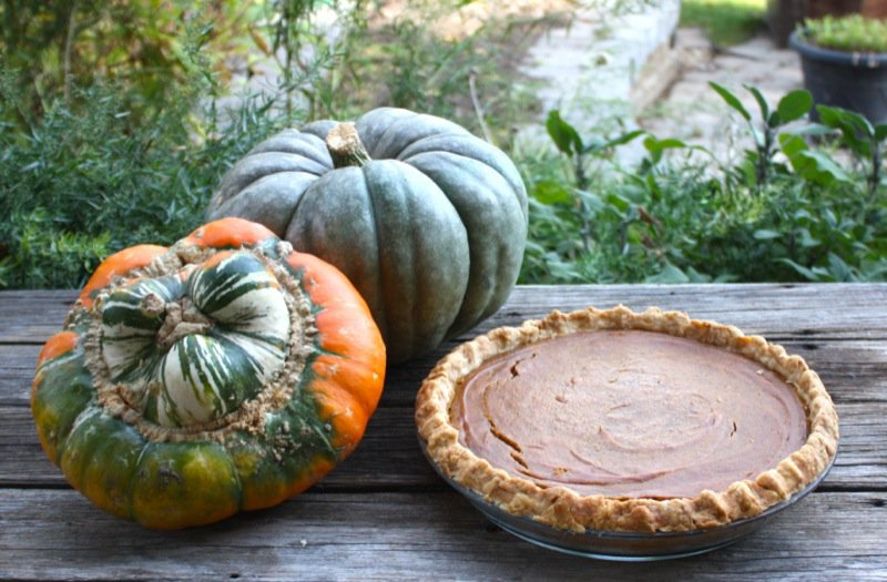 A Canadian Foodie Pumpkin Pie 1