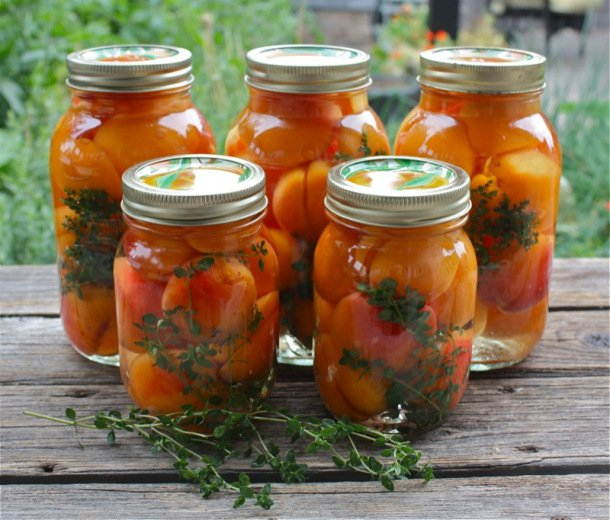 Canned Apricots A Canadian Foodie