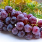 Classic Preparation of Concord Grapes for Recipes