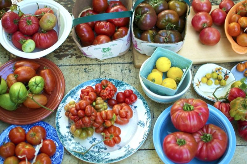 Heirloom-Tomatoes-1024x680