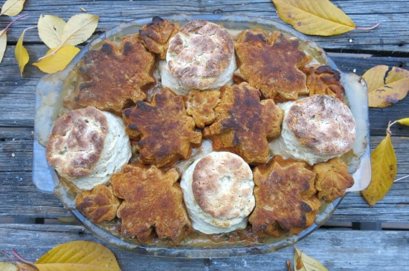 Canadian Prairie Chicken Stew with Yam Biscuits