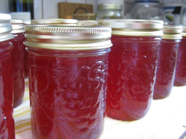 Lesli crabapple jelly