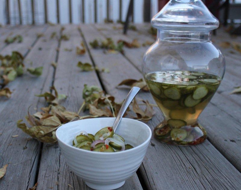wanda quick-pickle-cucumber