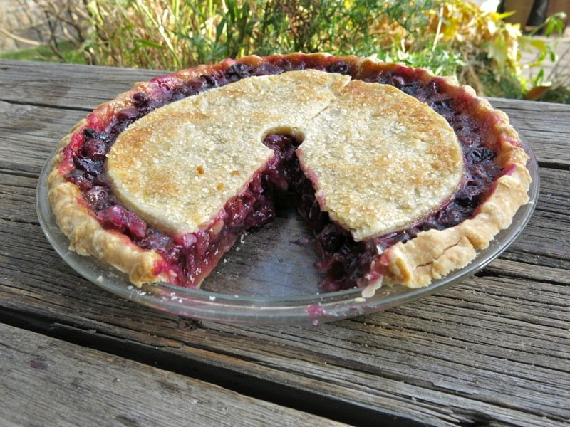 Canadian classic concord grape pie for Authentic canadian cuisine