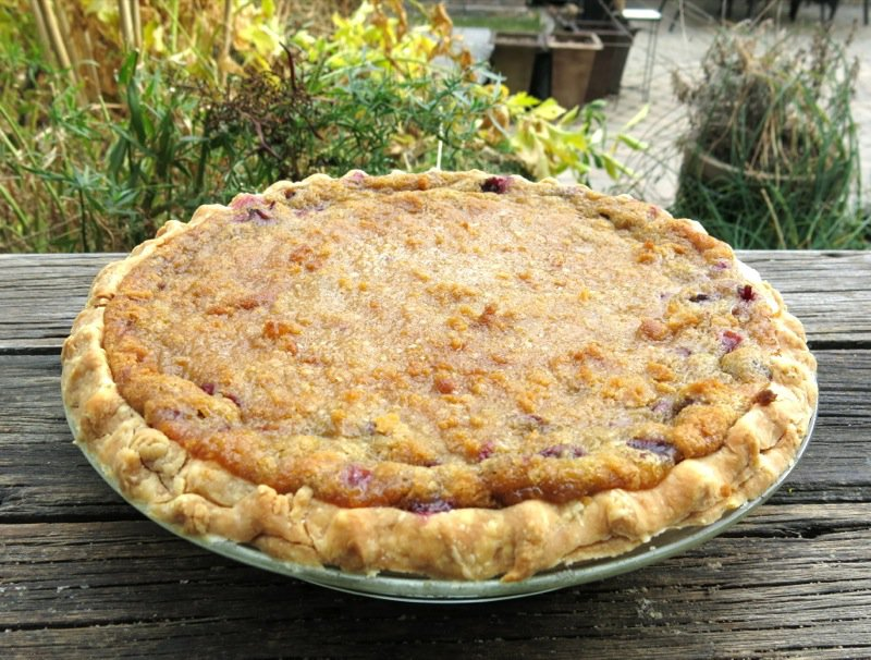 Concord Grape Pie with Crumble Topping