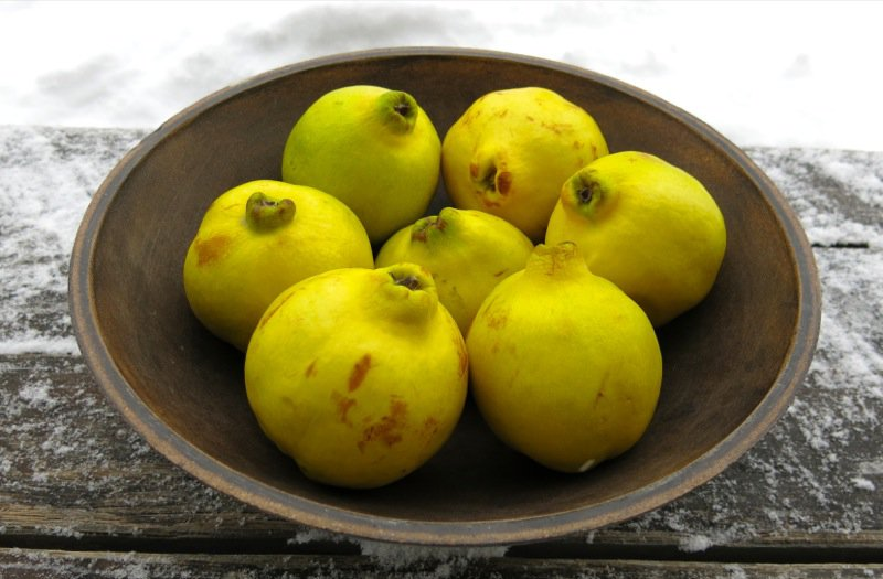 Homemade Quince Paste or Membrillo
