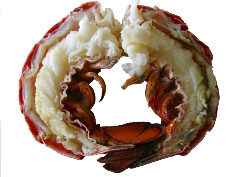 10 Lobster Tails Halved