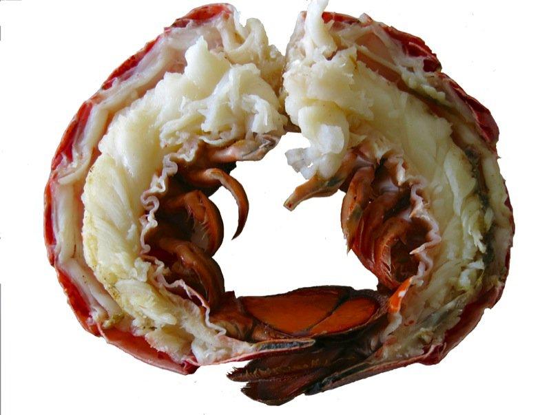 10 Lobster Tails Halved