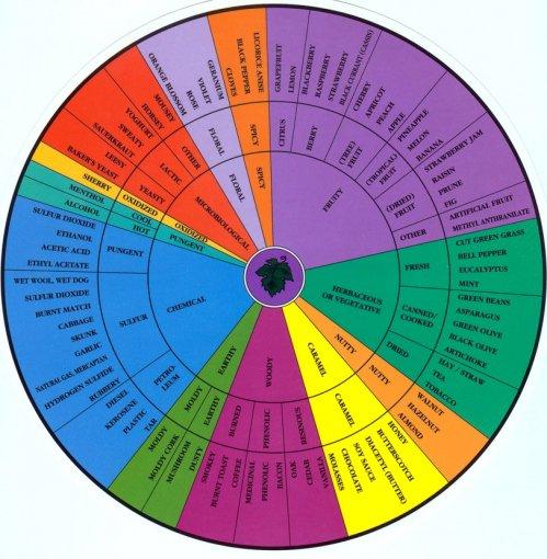 aroma_wheel
