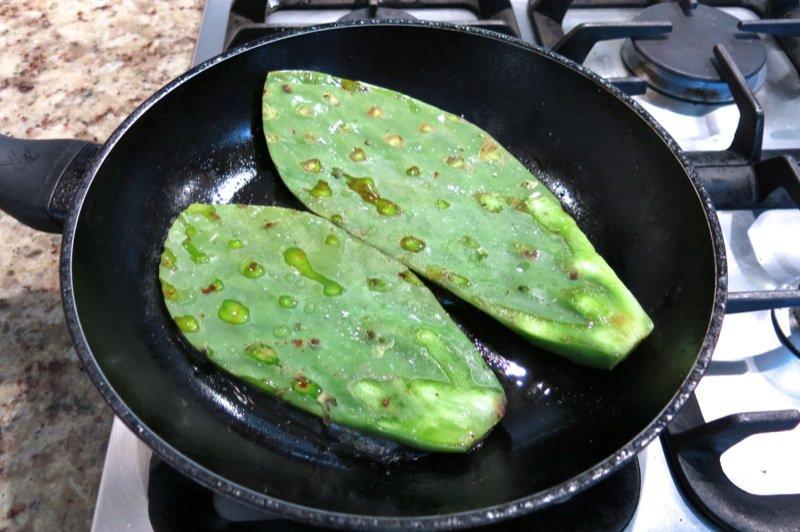27 Nopal Cactus