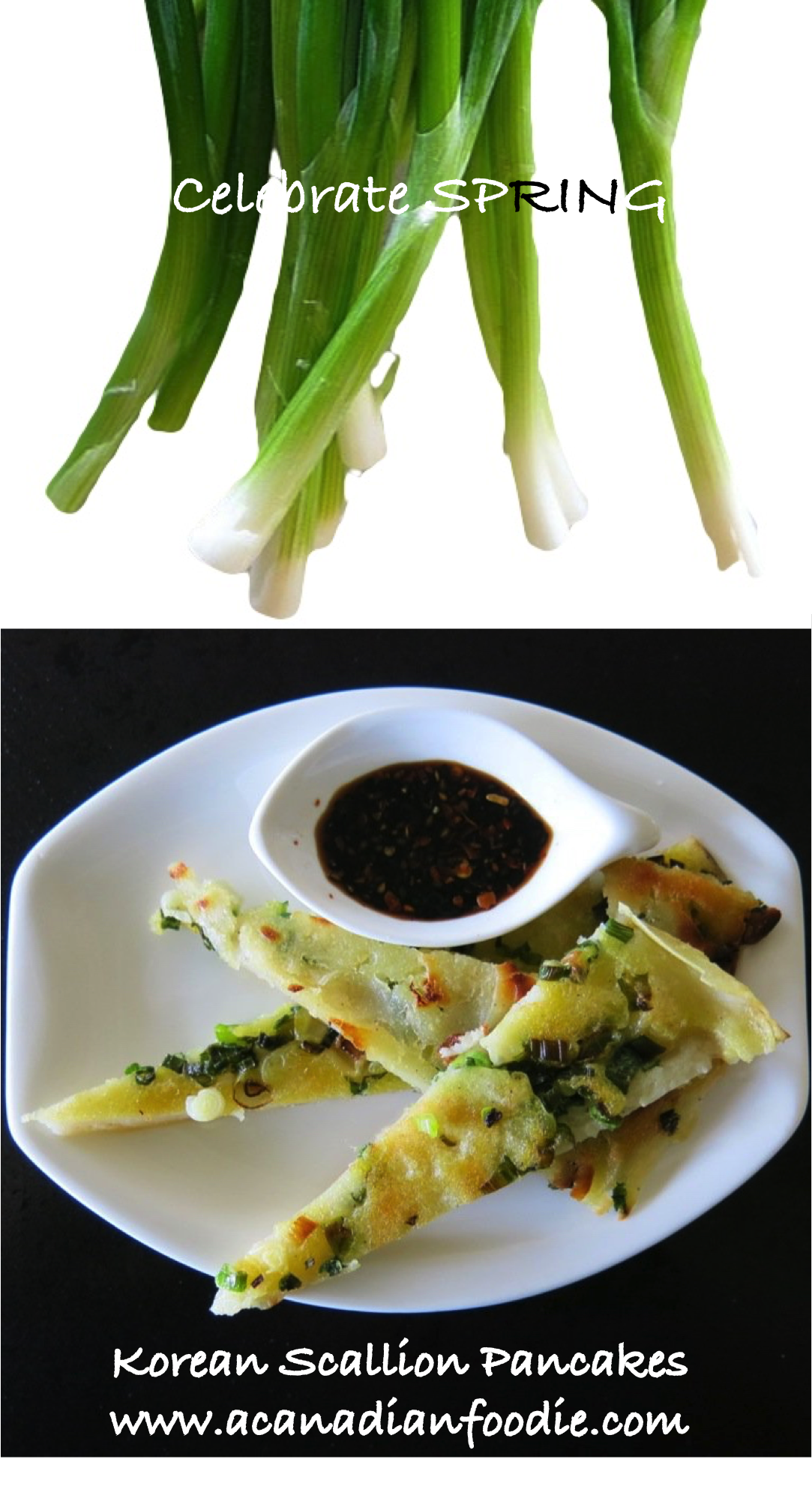 Korean Scallion Pancakes LONG