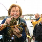 Wallace Wharf Lobster Haul: Fresh Lobster Feed!