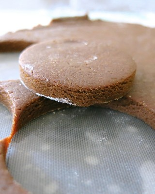 The Famous Pubnico Molasses Cookie