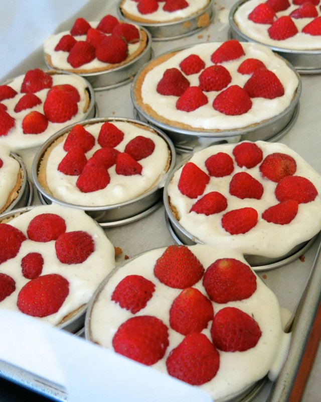 26 French Strawberry Tarts