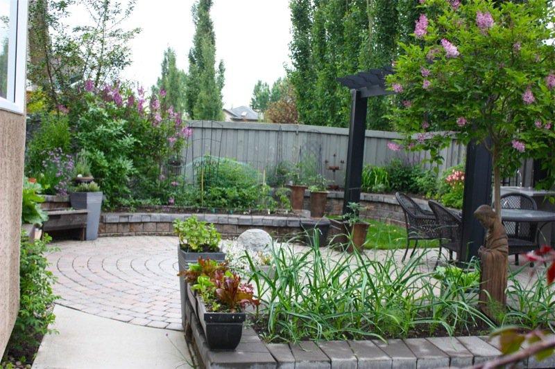 3 Spring Garden zone 3 2013