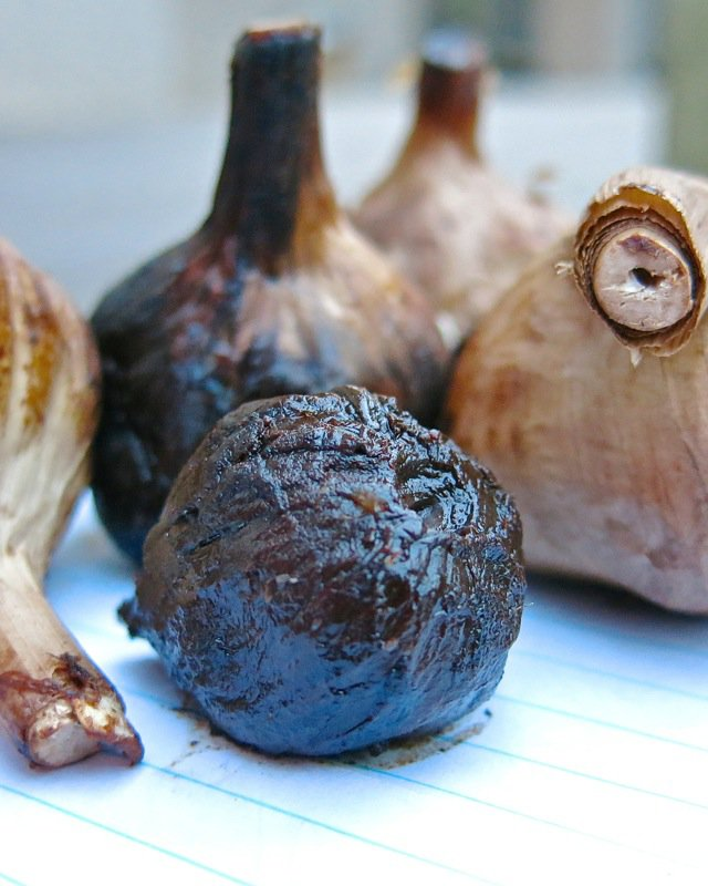 Al Picketts Eureka Black Garlic PEI