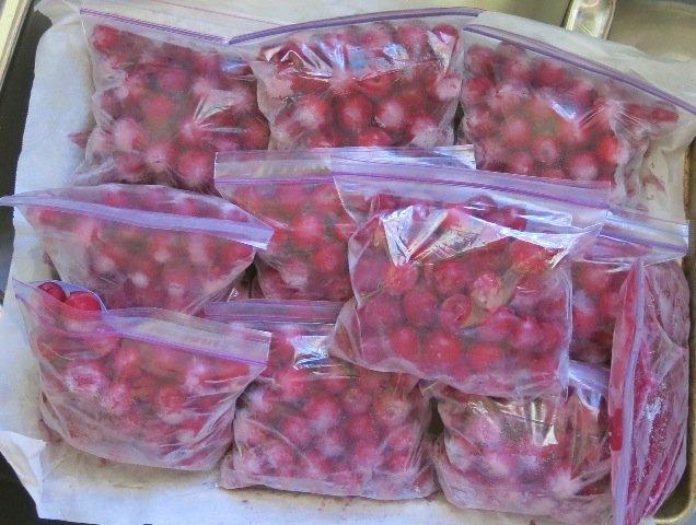 11 Frozen Sour Cherries