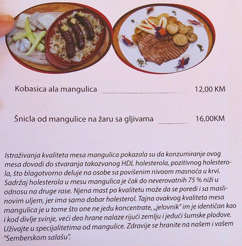 9b Semberski Salas August 2014