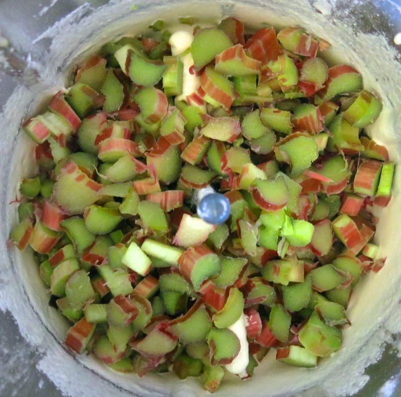 17 Rhubarb Custard Square Custard