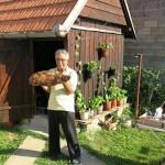 Bijeljina 2015: Petar Lugonja's Sunka