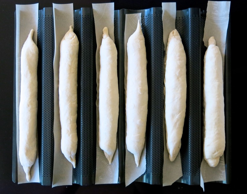 10 Baguettes in Pans to Proof