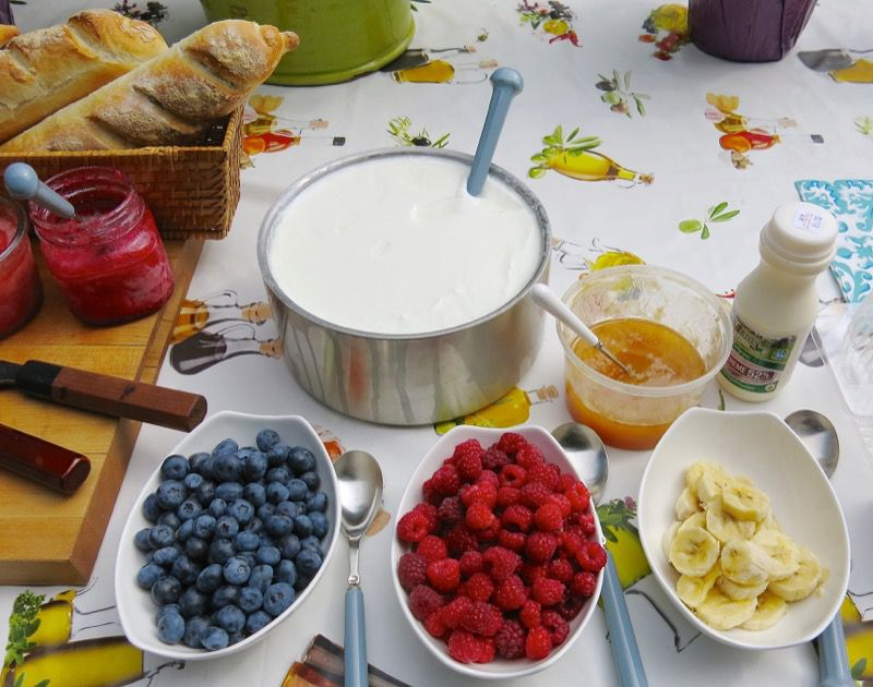 16 Homemade Yogurt