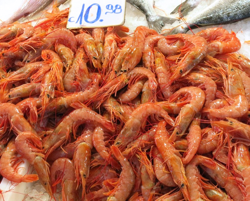 49 Athens Central Fish Market Shrimp