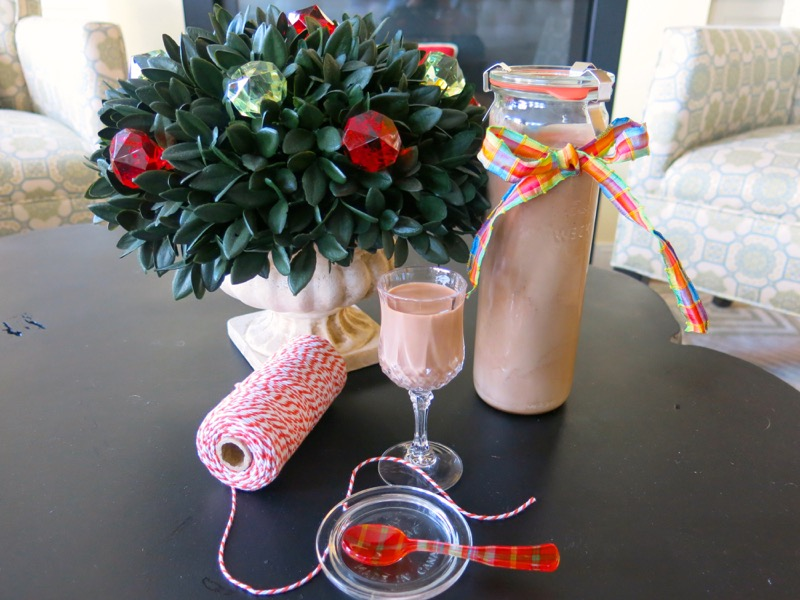 10 Homemade Thermomix Baileys