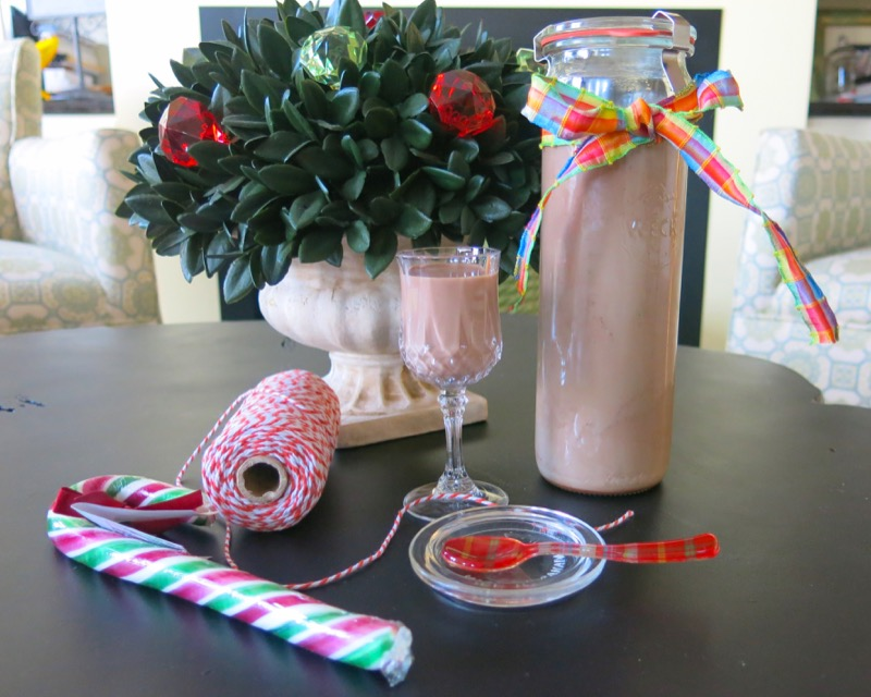 6 Homemade Thermomix Baileys