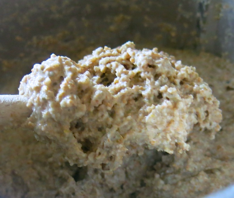 19b Traditional German Brown Bread Dough