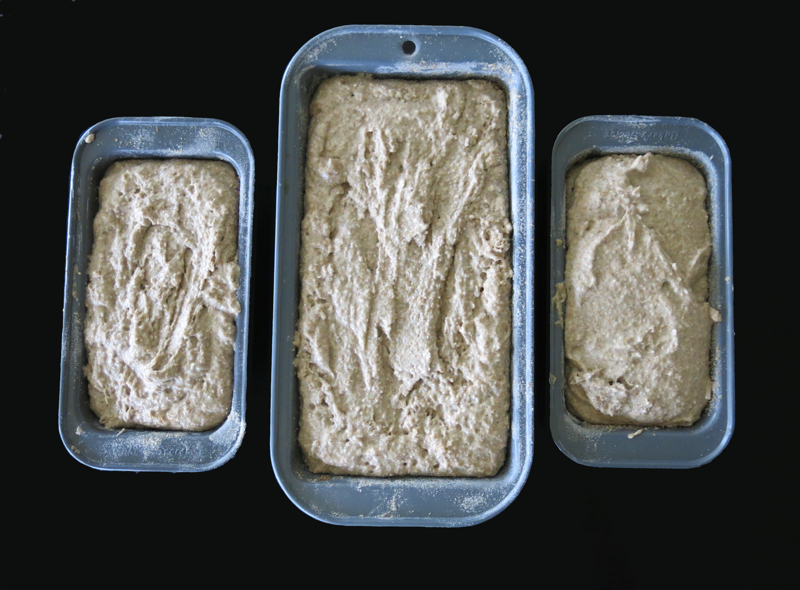 Brown Bread Dough in Pans 800