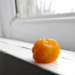 Homemade Cloudberry Jam or Homemade Bakeapple Jam
