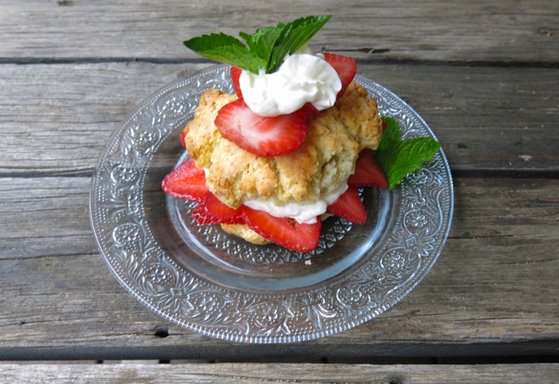 23 Canadian Strawberry Shortcake