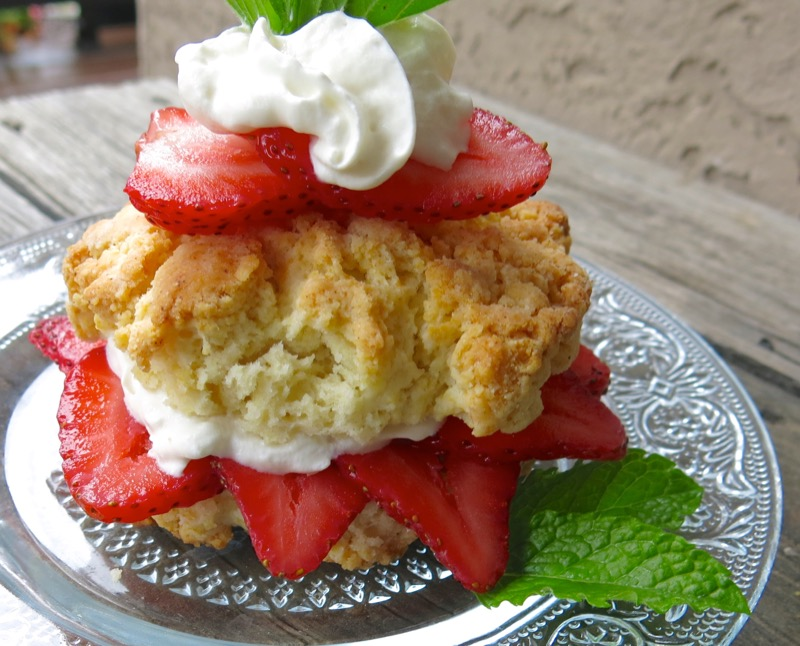 25 Canadian Strawberry Shortcake