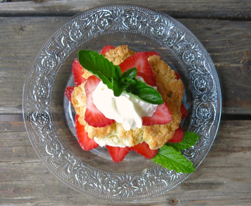 3 Canadian Strawberry Shortcake