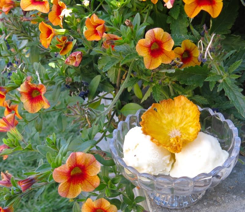 3 Pinacolada Frozen Yogurt