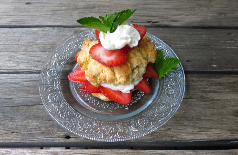 4 Canadian Strawberry Shortcake