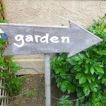 My June Zone 3 Garden 2016: Small Edible Urban Garden