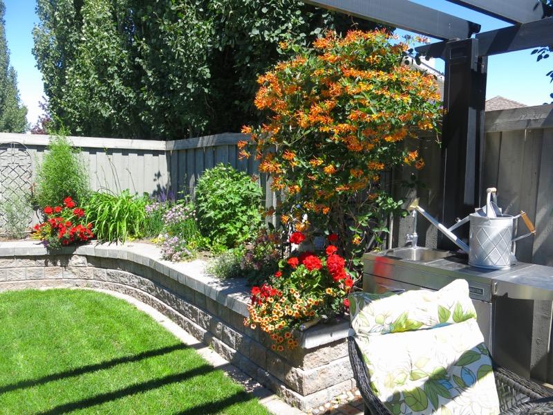 35c June Garden 2016